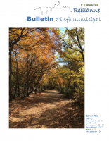 Bulletin municipal novembre 2020